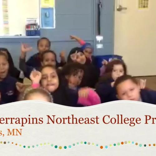 NECP Terrapins
