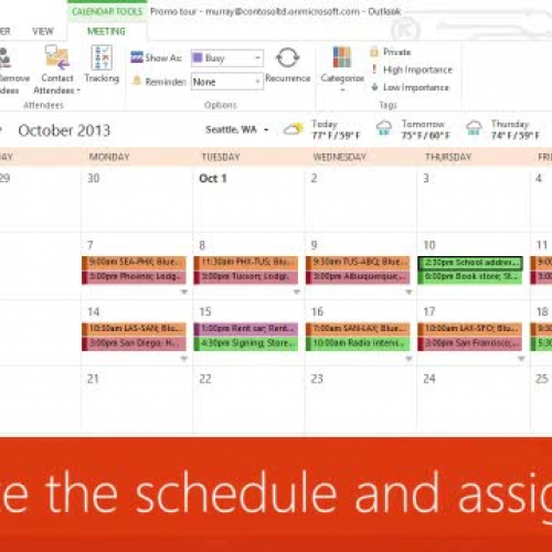 Organize the schedule and assign tasks