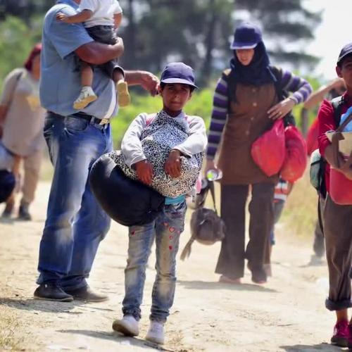 Migrant Children in Crisis