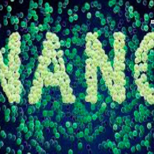 Nanotechnology: Advances in Medicine