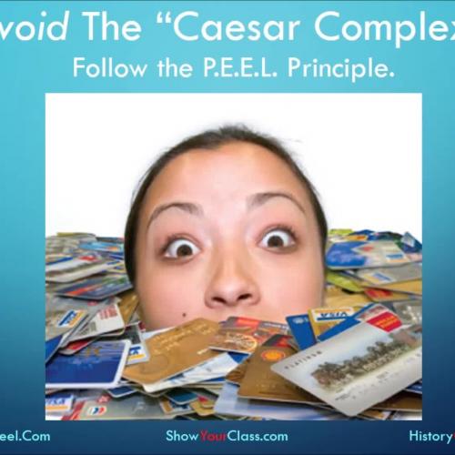 "Follow the ""P.E.E.L. Principle"""