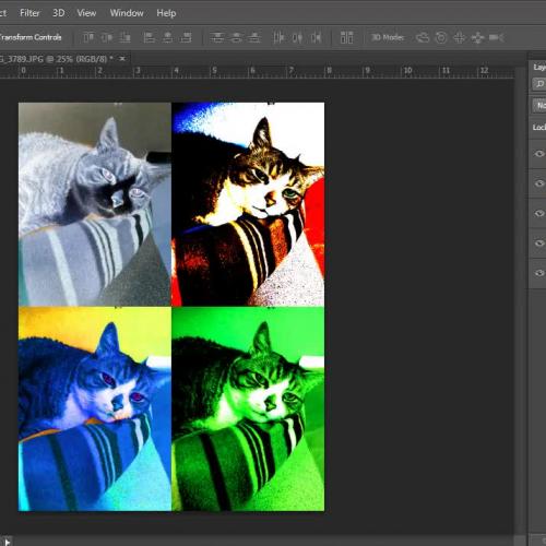 Image Adjustments in Photoshop