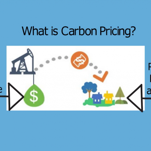 Gulf of Maine Heats Up and Carbon Fee