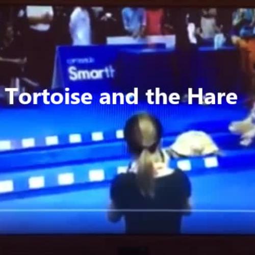 Tortoise & Hare Race!