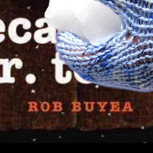 Because of Mr. Terupt Book Trailer