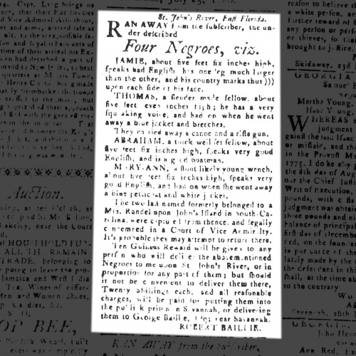 Runaway Slave Advertisements from the American Revolution