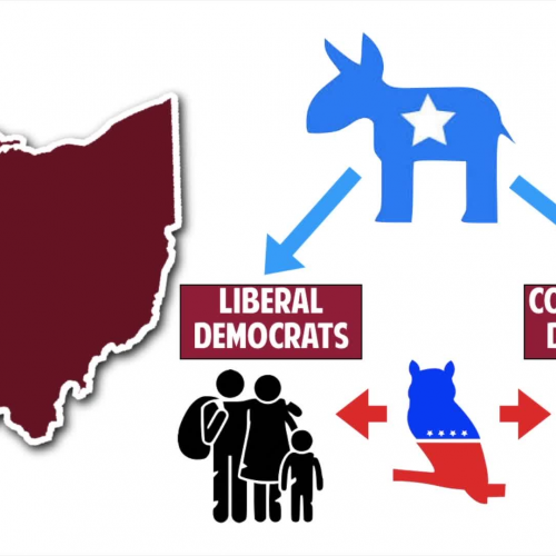 Ohio Constitution Video Lesson