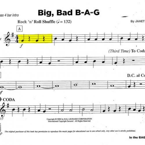 Big Bad Bag