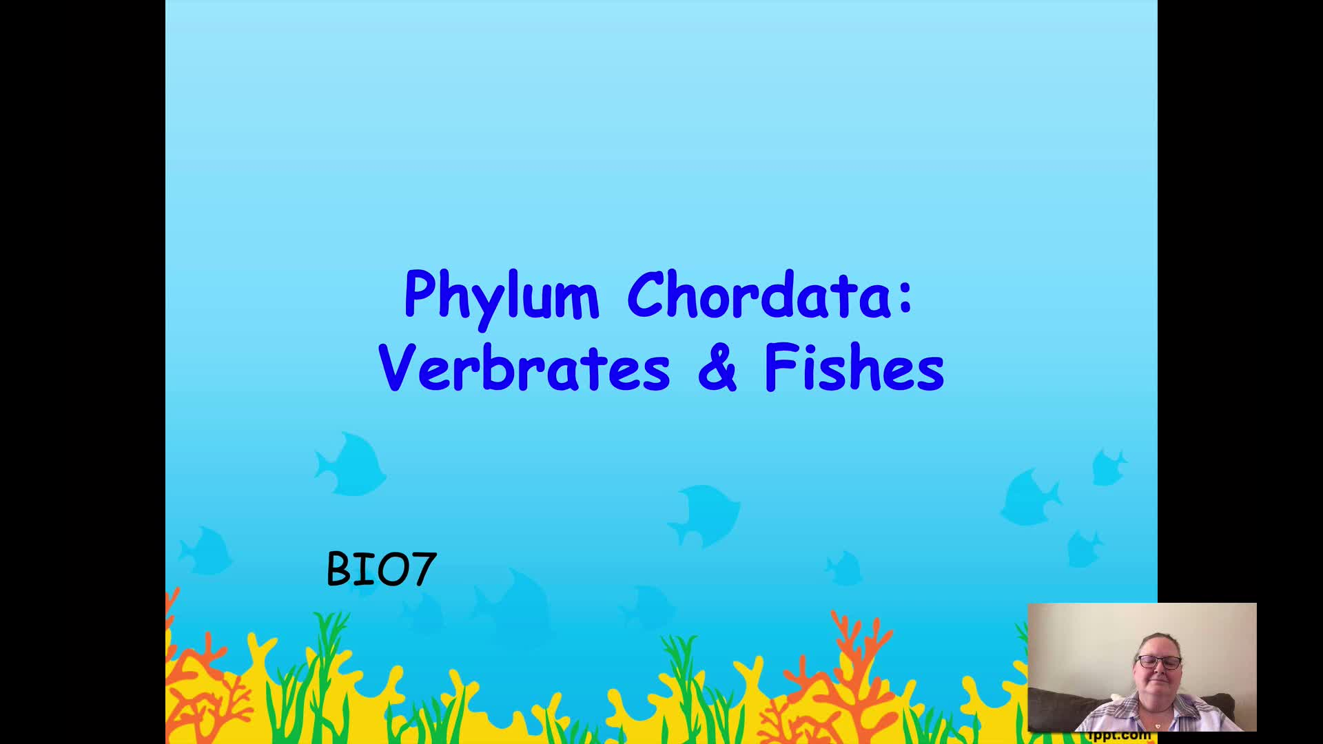 BIO7 - Chordata - Vertebrates, Fishes, & Amphibians - Part 1