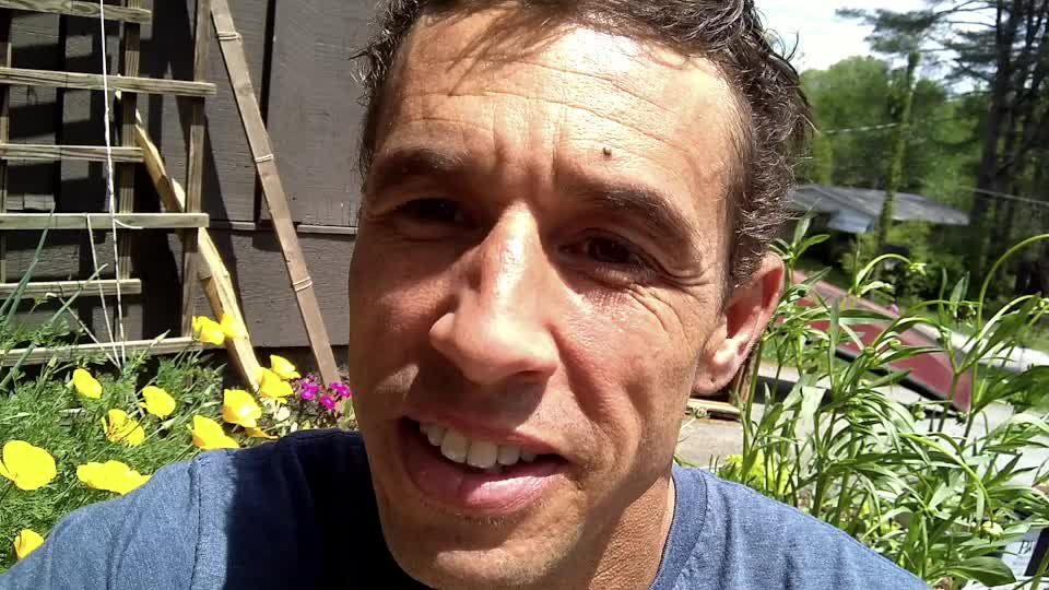 Science Life Video Blog -Episode 1 - Grades are Broken