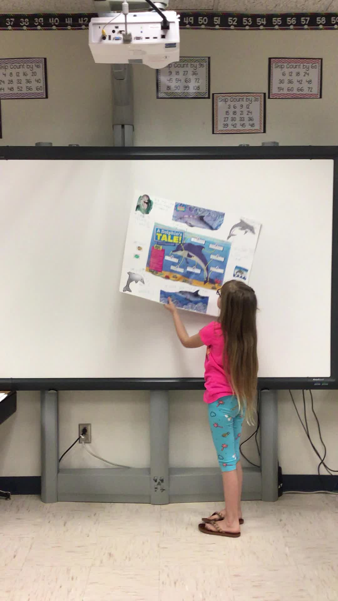 Dolphin animal research presentation