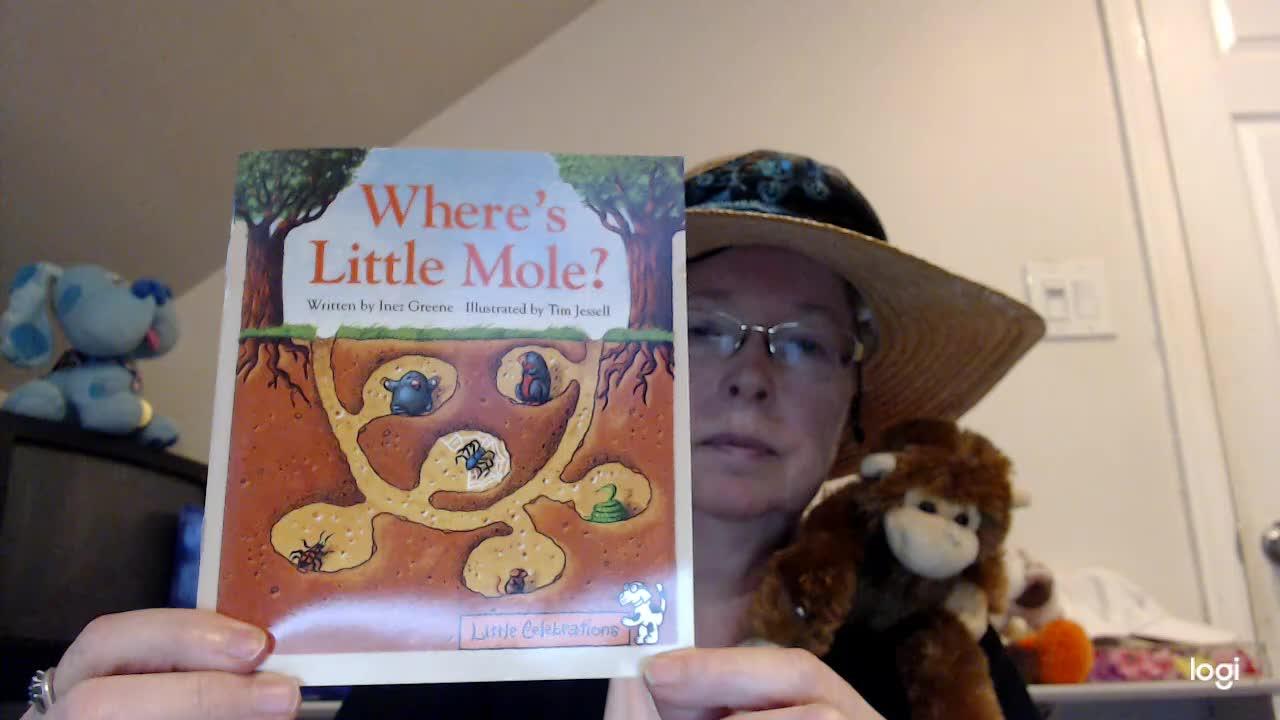 (read aloud) Where's Little Mole DRA 3