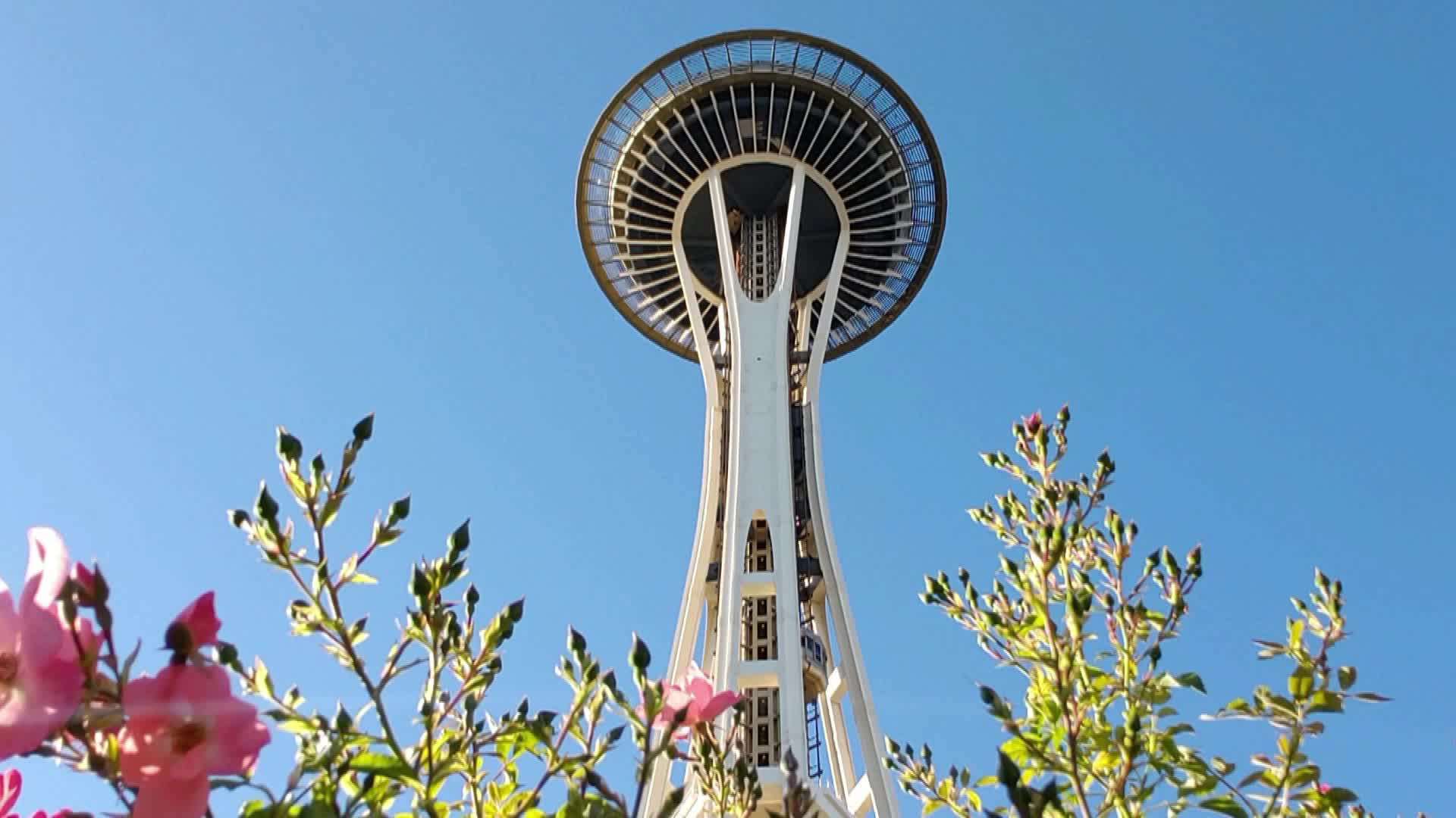 SCIENCE ON THE ROAD - Seattle Space Needle