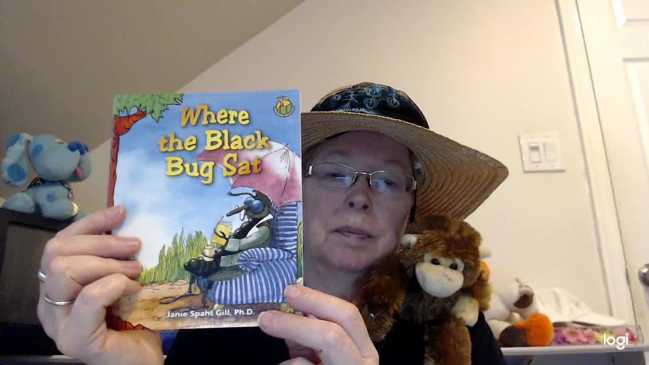 (read aloud) Where the Black Bug Sat DRA 3