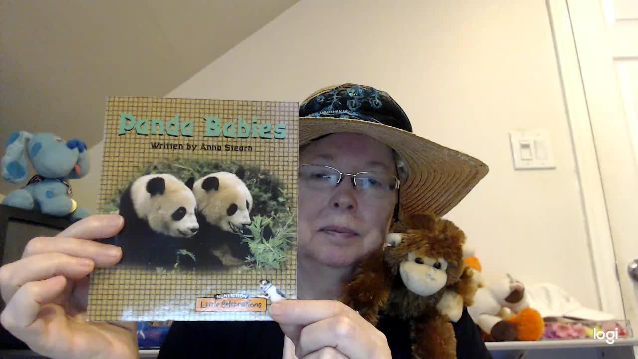 (student practice) Panda Babies  DRA 3