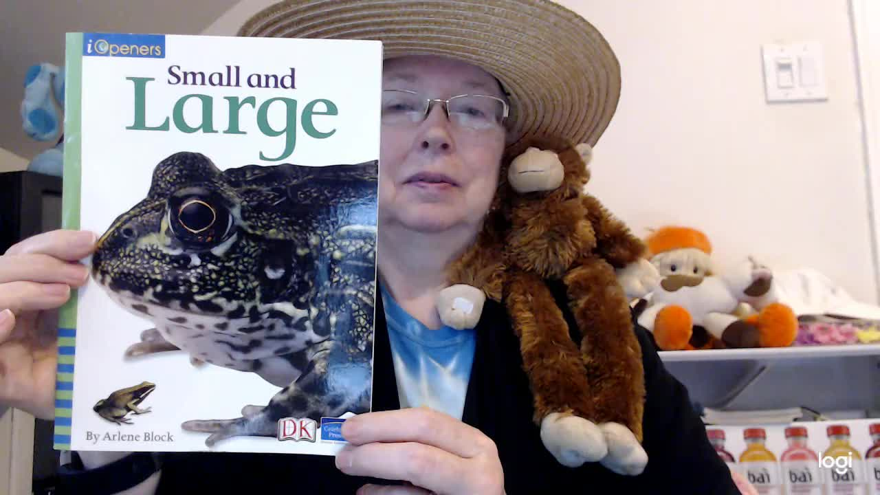 (read aloud) Small and Large DRA 4