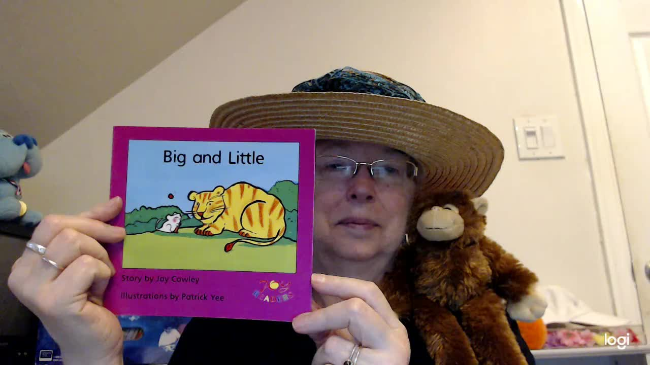 (read aloud) Big and Little DRA Level 6