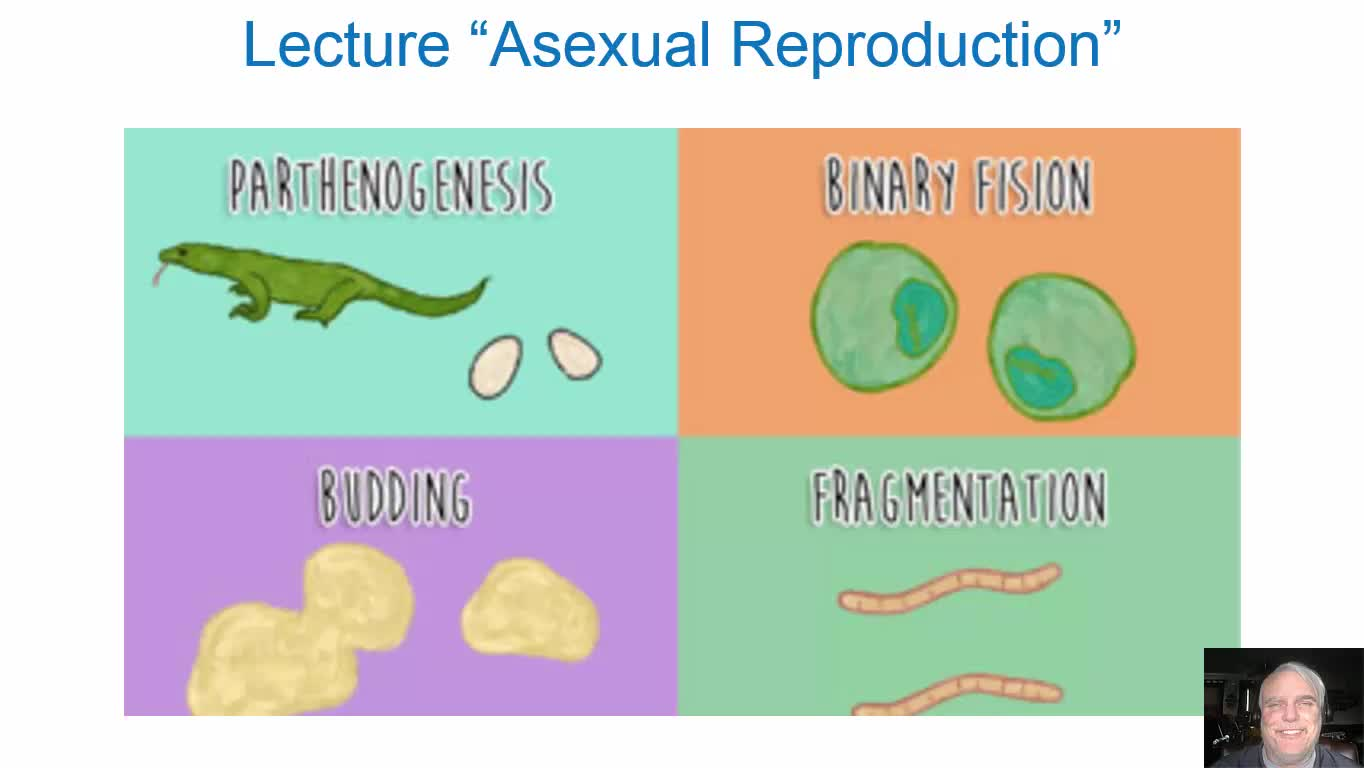 Asexual Reproduction Lecture`