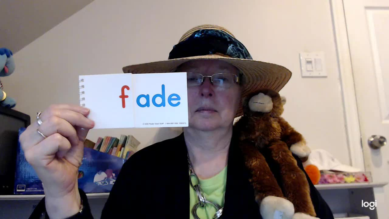 """""""ADE"""" Word Family"""